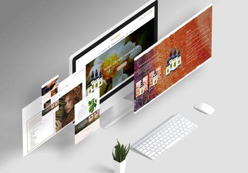 Cách để phát triển website bán hàng